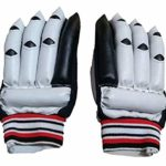 Rajeshwari Cricket Batting Gloves