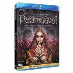 Padmaavat Movie in Hindi